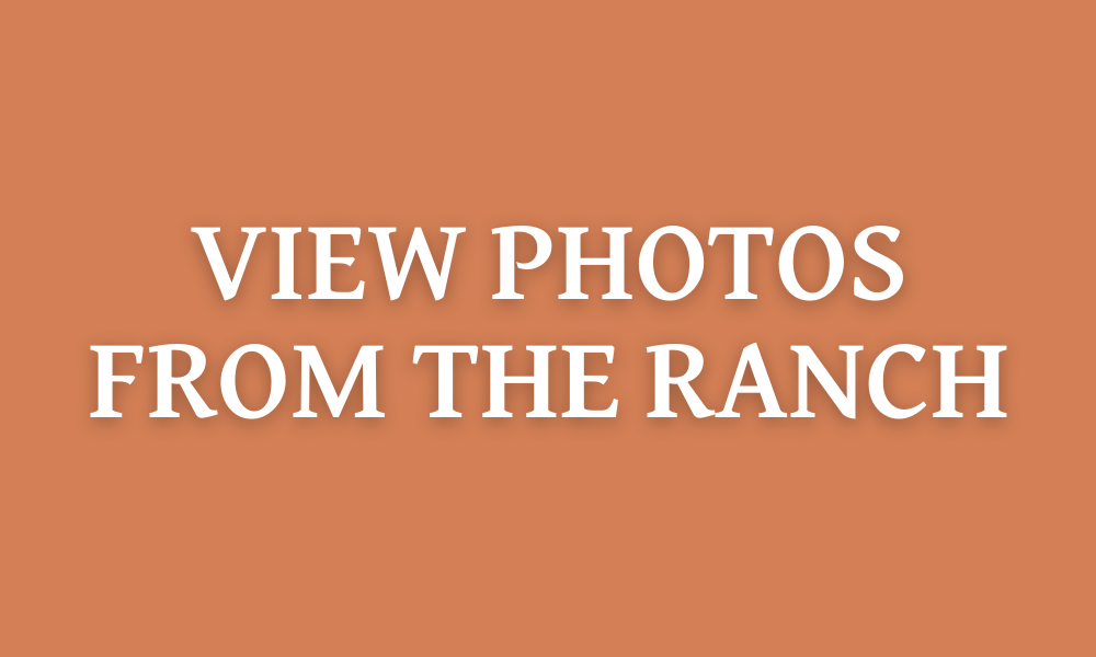 Photos of The High Lonesome Ranch