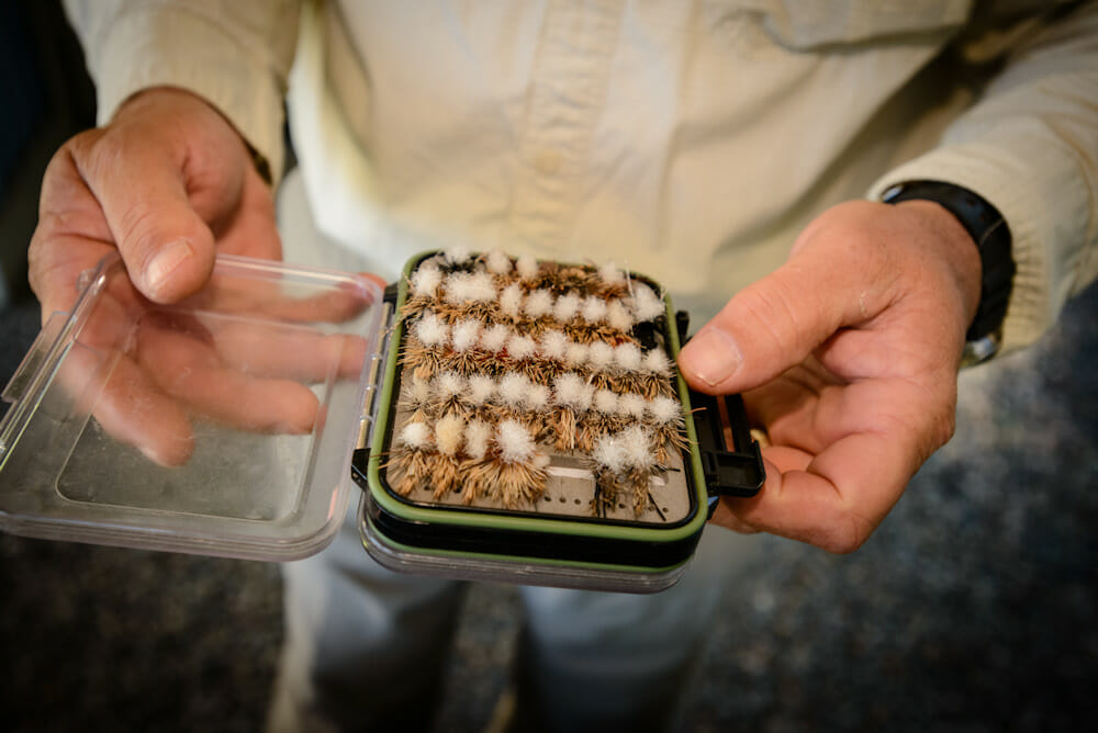 Flies for Fly Fishing Colorado