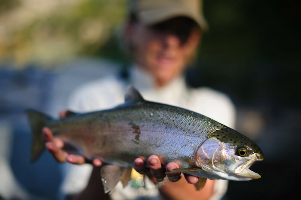 Trout Fishing Vacation Packages In Colorado