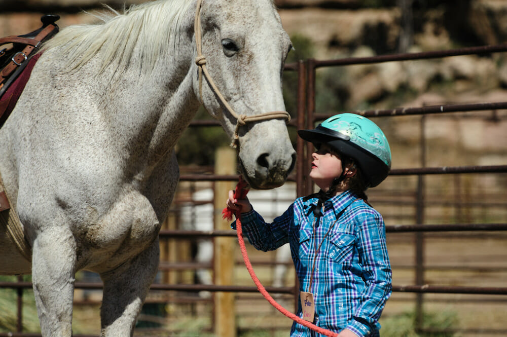 Equestrian Riding Colorado